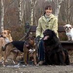Educatrice, comportementaliste et dressage canin